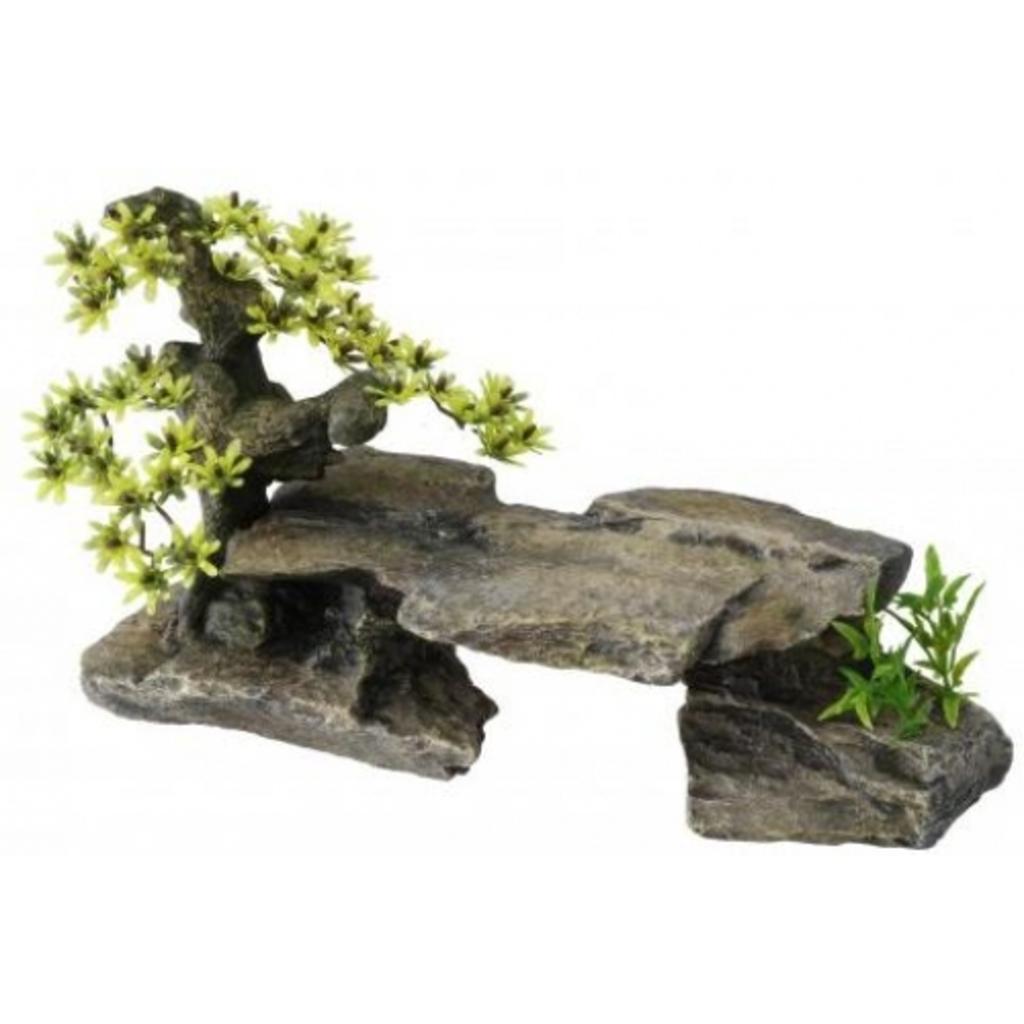 Decosteen bonsai aquarium decoratie van for Decoratie aquarium